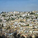 Granada Spain by Squealia