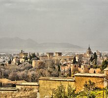 ALHAMBRA PALACE, GRANADA, SPAIN by Squealia