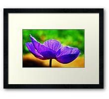 Simple Summer Beauty Framed Print