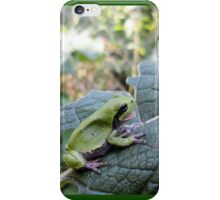 I'm hungry!!! - Tree Frog with his/her mouth open waiting for a fly - Nature Photography by Barberelli. iPhone Case/Skin