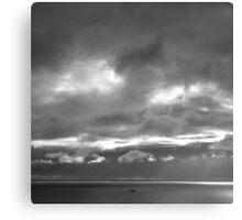 On a cliff, I saw a gull fly past! - photography Canvas Print