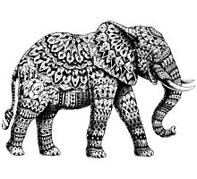Ornate Elephant 3.0 Photographic Print