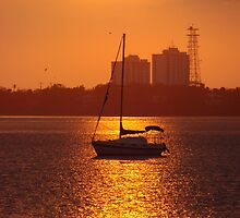 Setting Sail by Flabosoxfan