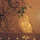 Fog over Tour Eiffel - Paris by Yves Roumazeilles