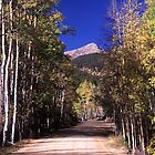 The Road to St. Elmo by Gary Lengyel