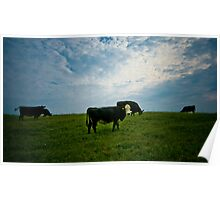 Atom Heart Mother Poster