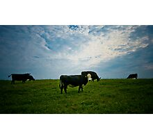 Atom Heart Mother Photographic Print
