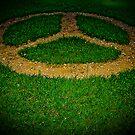 Peace On Earth by Ryan Piercey