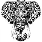 Ornate Elephant Head by BioWorkZ