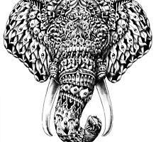 Ornate Elephant Head by BioWorkZ
