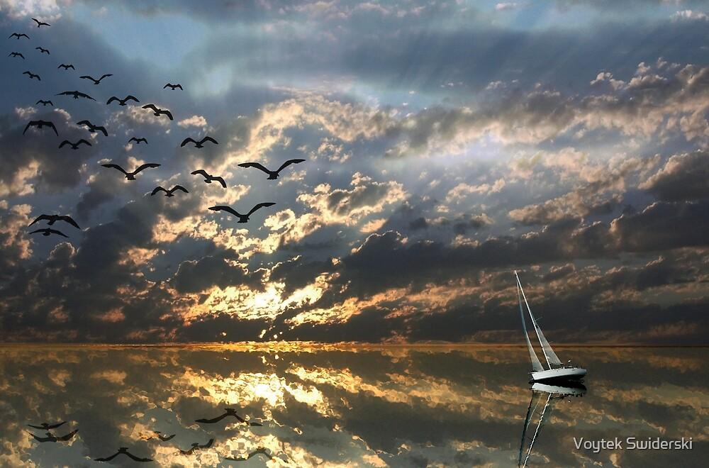 Reflections by Voytek Swiderski