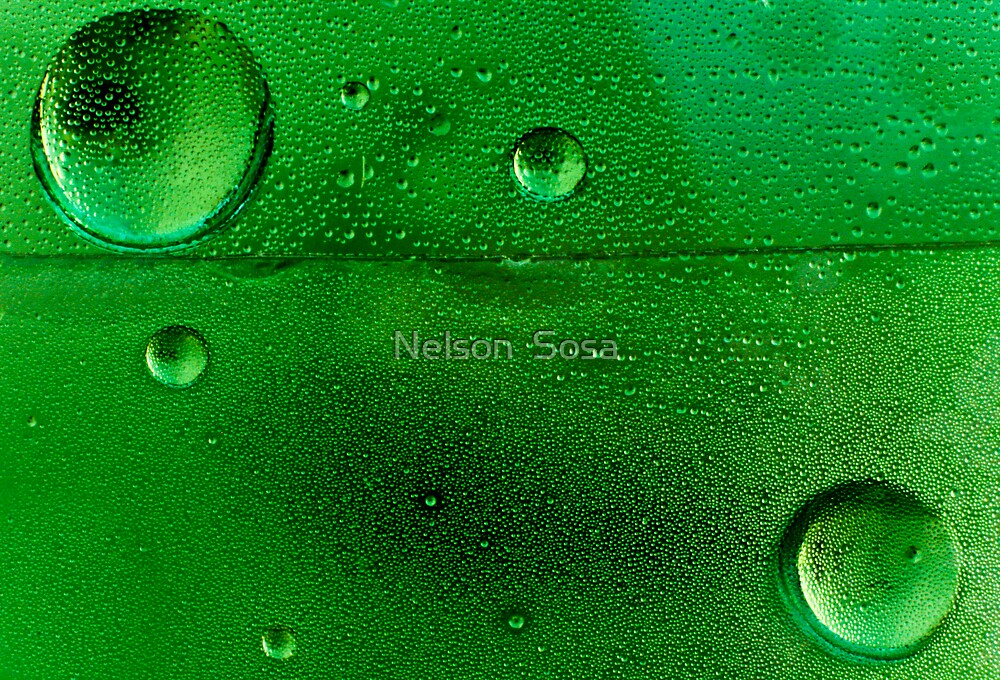 Fresh by Nelson  Sosa