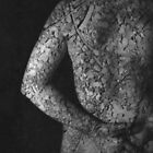 rocks by Hayley Joyce