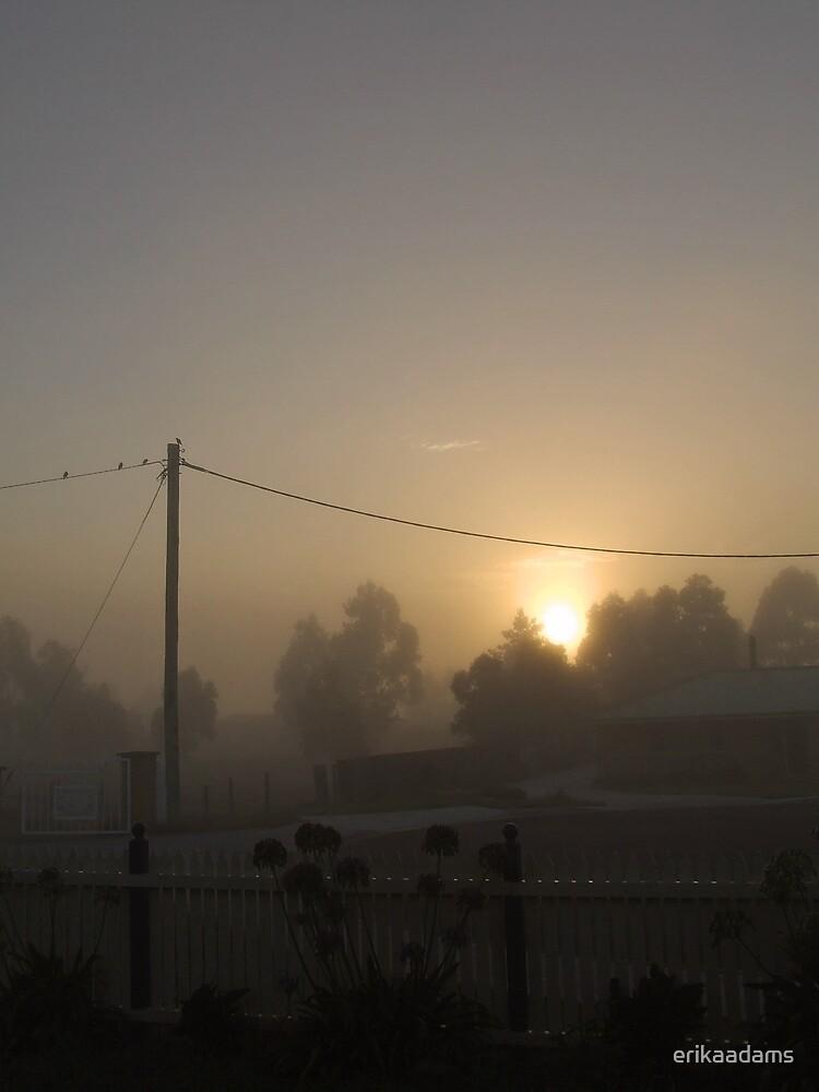 Warm Fog Sunrise by erikaadams