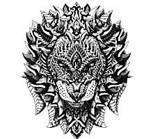 Ornate Lion Photographic Print