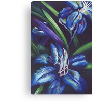 Blue Rhapsody Canvas Print