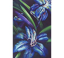Blue Rhapsody Photographic Print