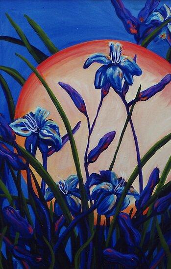 Lily Light by Jill Mattson