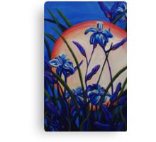 Lily Light Canvas Print