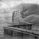 The Fog Hides Secrets- Black & White Version by Susan Werby