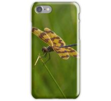 Patterned Wings iPhone Case/Skin