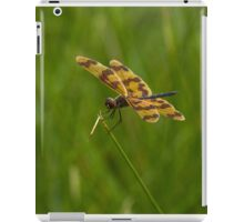 Patterned Wings iPad Case/Skin