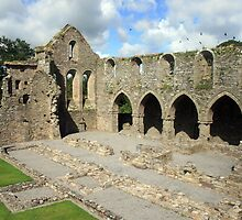 Jerpoint Abbey view by John Quinn