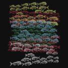 fish school by dennis william gaylor