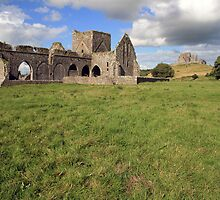 Rock of Cashel from Hore Abbey 1 by John Quinn