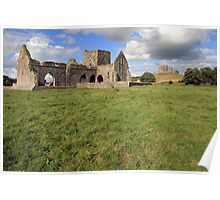 Rock of Cashel from Hore Abbey 1 Poster