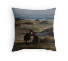 Wallabies on beach Throw Pillow