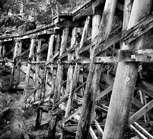 Puffin Billy Trestle Bridge by Samantha Cole-Surjan