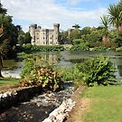 Johnstown castle view 2 by John Quinn