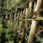 Trestle Bridge by Samantha Cole-Surjan