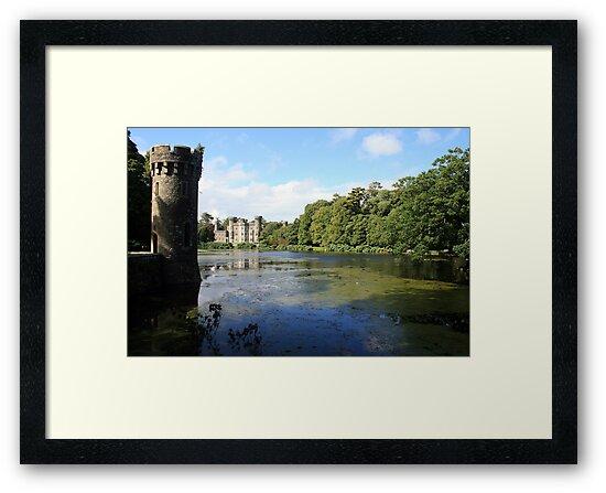 Johnstown castle view 8 by John Quinn