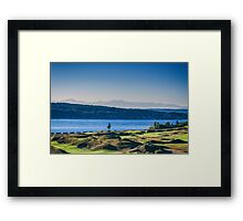 Chambers Bay Tree Framed Print