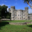 Johnstown Castle view 5 by John Quinn