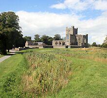 Tintern Abbey view 4 by John Quinn