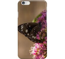 Common Crow Butterfly - Wings Closed iPhone Case/Skin