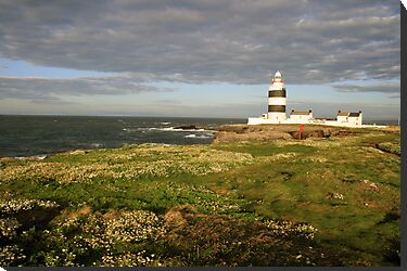 Hook Head lighthouse by John Quinn