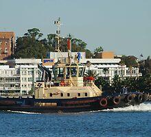 Newcastle Harbour - Svitzer Hamilton Tug by Phil Woodman