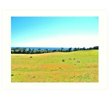 Rural Landscape of Scania Art Print