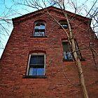 Hillside Cottage, Lyman Reform School for Boys by Rebecca Bryson