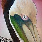 Pelican Peeking by Scott Plaster