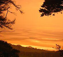 View from Arnside by vanorange