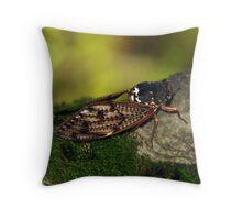 Semi Cicada Throw Pillow