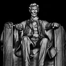 Lincoln by Jamie Lee