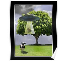 Abducting Cows Poster