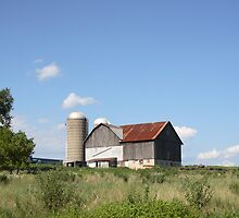 Summer Barn by Donna Sherwood