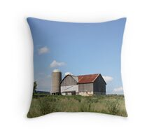 Summer Barn Throw Pillow